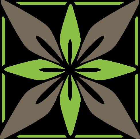 Eigenschaften von Guarana zur Gewichtsreduktion